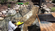 View Exotic Koi Pond Designs & Water Garden Ideas
